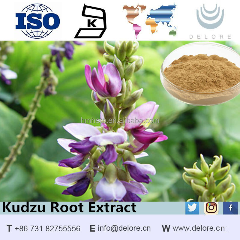 Factory for sale Kudzu Root Extract pueraria flavones