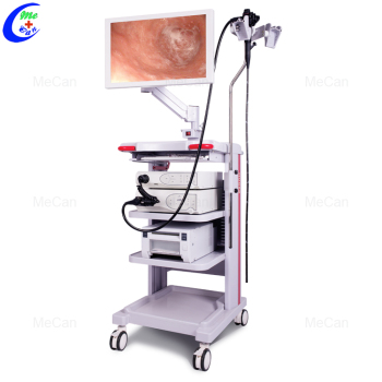 Medical Equipment Endoscopy System With LED Light Source, High Resolution Electronic Video Gastroscope And Colonoscope