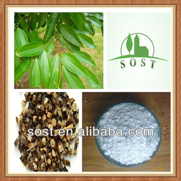 Powder Cassia Twig Extract Herbal Tea
