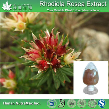 cGMP factory Natural Salidroside Rhodiola Rosea Extract/Cosmetic Rhodiola Rosea Extract Powder