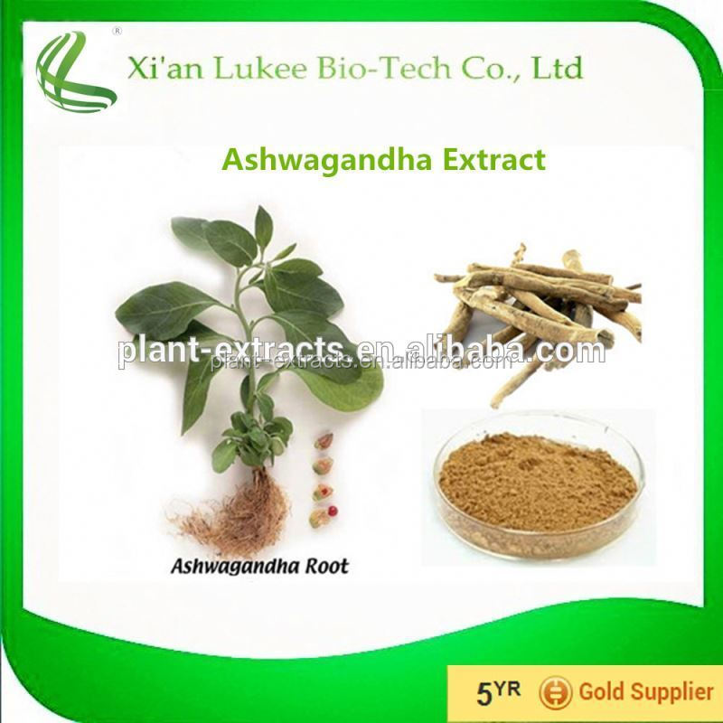 Natural Ashwagandha Extract 20% Withanolides/Ashwagandha Powder