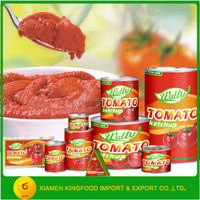 Tomato Paste/ Ketchup canned food