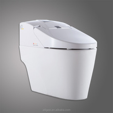 Cheap Sanitary Ware Slow-close Warm Water Cleaning Intelligent Toilet ZJS-07J