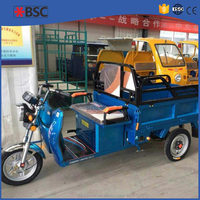 Hot Sale 2015 pick up tricycle