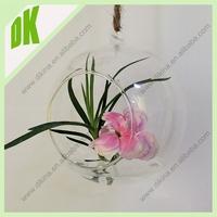 Carnivorous terrariums can be spectacular, DIKINA manufacture wholesale Air Plant Hanging Glass Globe Terrarium