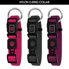 O-Ring Dog Collar and Leash with High Quality Nylon