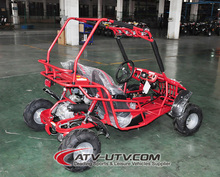 110CC 2 Seater Cheap Gas Powered Go Kart with EEC EPA Certificate