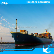 The most Competitive local sea freight forwarder shipping from China to Morocco Casablanca port