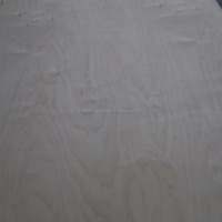 Poplar Core 18mm Russian Birch Plywood