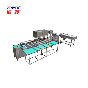 Best price automatic egg sorter/grader/egg grading machine
