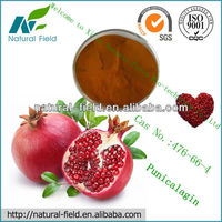 punicalagin pomegranate peel/seed extract
