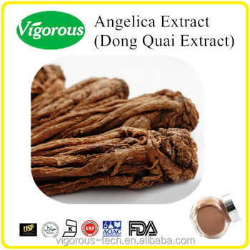 GMP angelica sinensis extract /Natural angelica root extract / 1% ligustilide dong quai /angelica extract