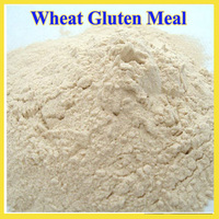 Feed Grade Wheat Gluten Meal for sale