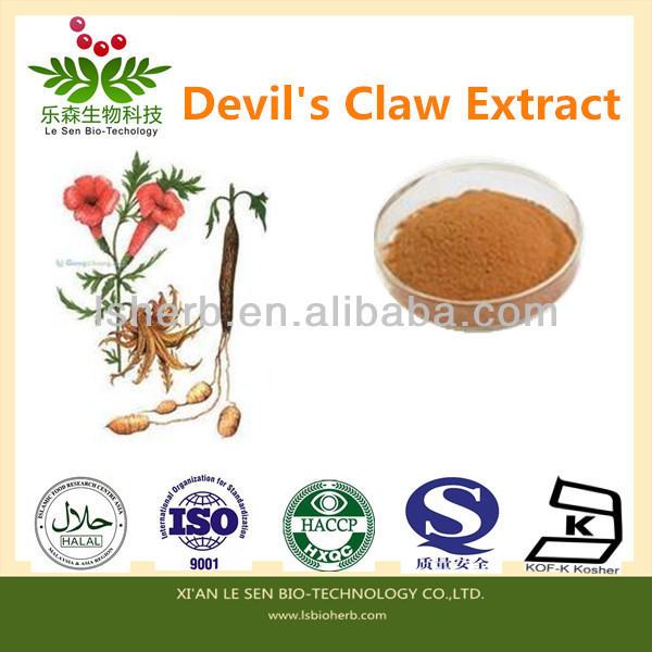 Cosmetics Ingredient Natural Devil's Claw Extract Harpagosides 1%-5%