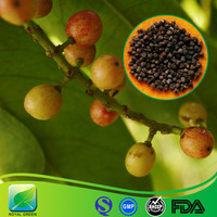 TOP Quality CAS Number 61281-38-7 Schisandra Chinensis Extract Fructus Schizandrae Powder