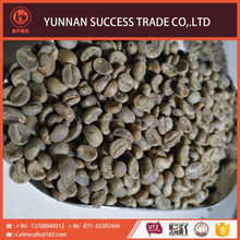 Newest hot sale promotion quality raw arabica coffee bean