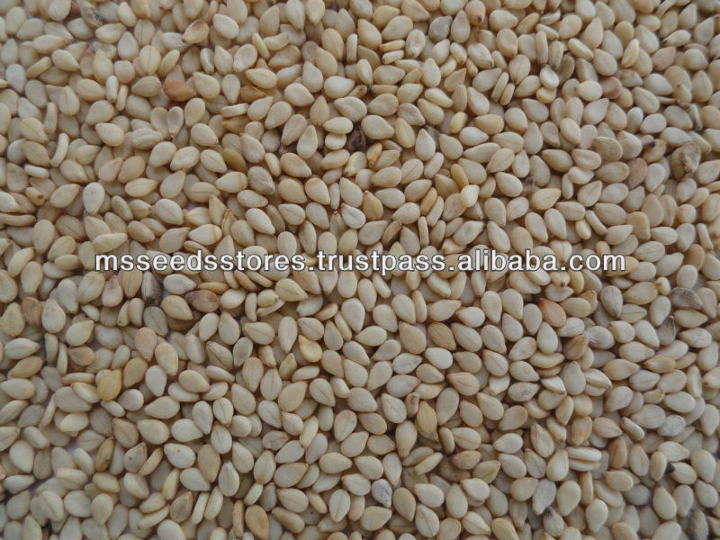 Moon Star Best Quality Natural Sesame Seeds