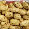 healthy and natural and green vegetables fresh yellow potato