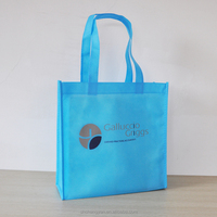Promotional Cheap Customized non woven bag(NW-1261-401)
