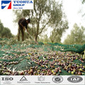 China Manufacture HDPE Olive Net for Fruit Harvest