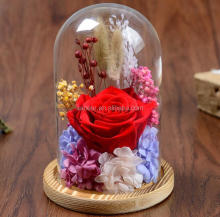 Luxury gift long live rose for party decoration the unique preserved flower roses color in glass dome never die rose