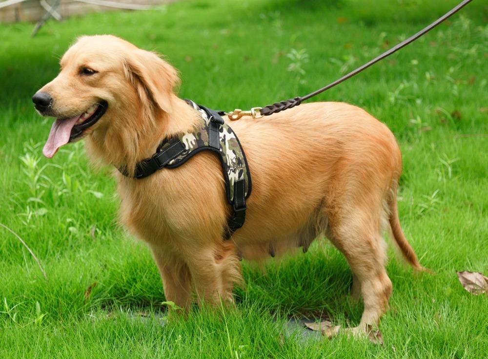 tail up dog harness vest oxford padded service dog harness