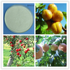 Agrochemistry Farming BNOA Beta Naphthoxyacetic Acid