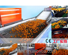 vegetable and fruit washer cleaning machine commercial washing machine