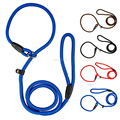 Brand New Nylon Dog Leash Training Dog P Leash Lead Strap Collar 4 Colors&3 Sizes wholesale Rope Slip leash