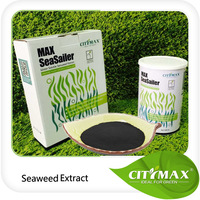 Best Quality Organic Soluble Sargassum Seaweed Extract Fertilizer