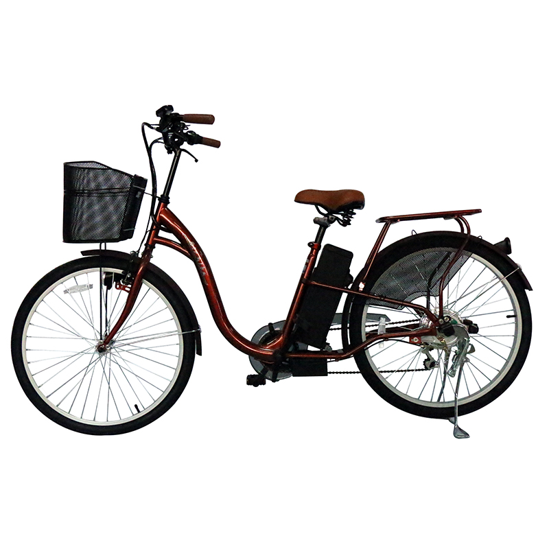 New Style City Star Electric Bike Bicycle