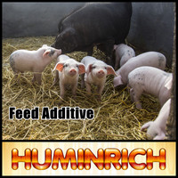 Huminrich Shenyang 100% Water Soluble Sodium Humate Animal Feed Fattening