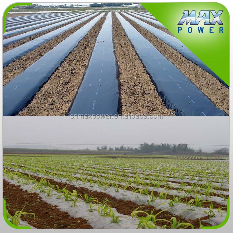 1m X150m Black White Ground Cover for Agricutural