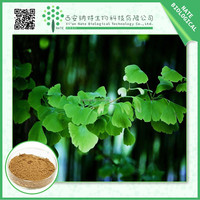 TOP grade ginkgo extract flavone Glycosides 24 Lactones 6 FREE sample