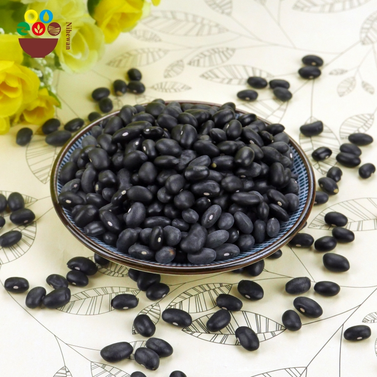 Origin natural dried black kidney beans/black bean small type with low price