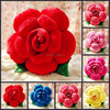 Various colorful plush rose promotional cute red stuffed soft plush flower shaped pillow