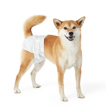 Pet Dog Disposable Diapers Physiological Pants