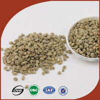 new harvest Yunnan coffee bean fresh picked green coffee beans