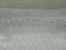 20Gauge Galvanized and black vinyl coated Poultry Wire Netting / Chicken Wire Mesh /