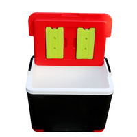 beijing roloo 28L food delivery fishing outdoor traveling handle cooler box for bike