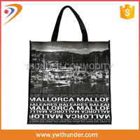 Various Fabric and Pattern reusable shopping bag,pp woven shopping bag,nonwoven shopping bag