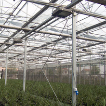 Multi-Span Frame High Roof Used Greenhouse Equipment For Sale