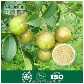 foaming agent for detergent/ Tea saponin/ camellia oleifera seed extract/ China Factory Over 10 Years