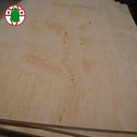 12mm C+ /C Slotted Radiata Pine Plywood