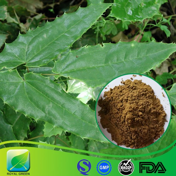 Epimedium extract the medicine herb for sex power