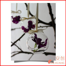 glass hanging planter air plaint terrarium container case_wedding decoration vase