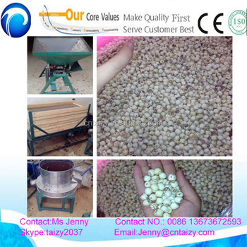 Low price lotus seeds shelling machine/lotus seed sheller