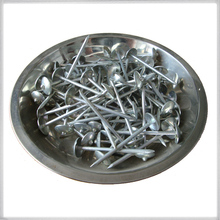Corrugated roofing nails/Roofing Nails With Plain Shank/roofing nails with pvc washer