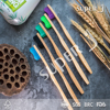 Fully Biodegradable Non Toxic Bamboo Toothbrush