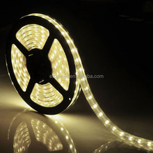 Hight quality SMD5050 led strip single color r/y/b/g/w dc12v 60leds/m with CE&RoHS from shenzhen factory